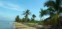 Belize Coastal Estate & Farm