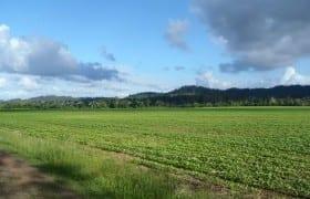 400 Acre Farm
