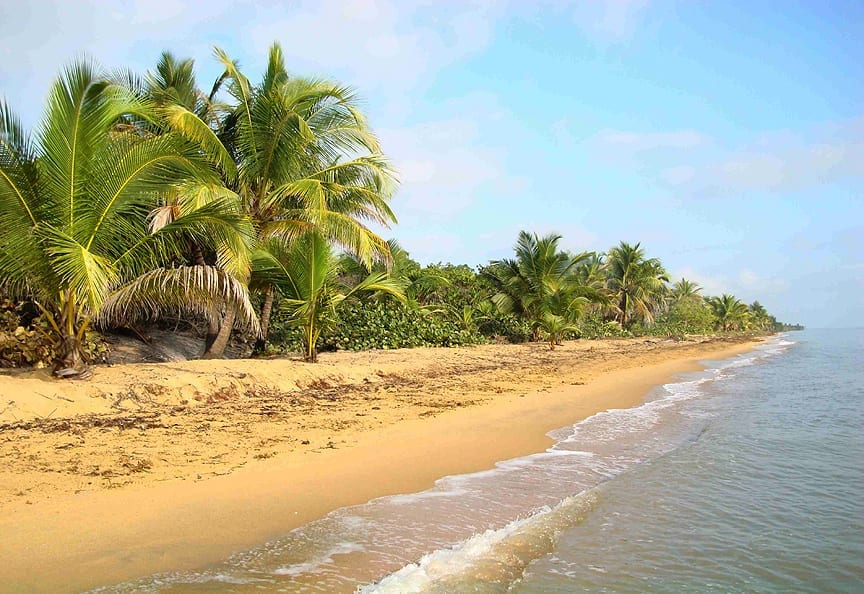 Wide open Caribbean beach