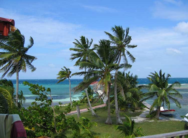 Coral Reef Island Estate