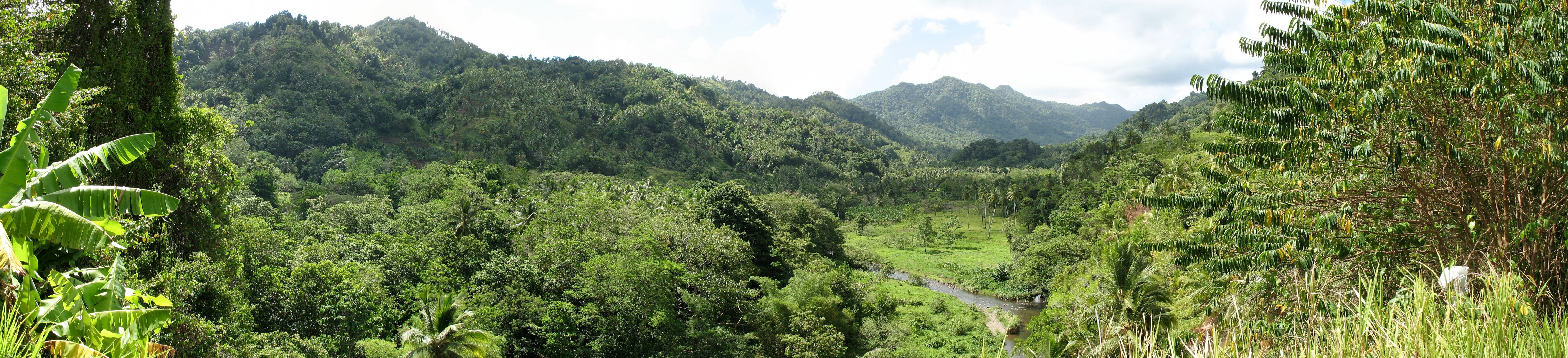essay on tropical forest archaeology in western pichincha ecu Essay sasrutha sinhala essays in law our background and circumstances essays essay about teacher professional goals essay on tropical forest archaeology in.