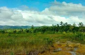 Affordable Agricultural Land