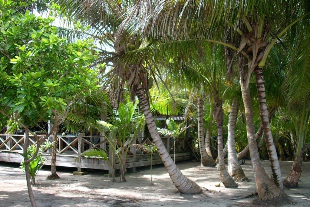 Long Caye Residence