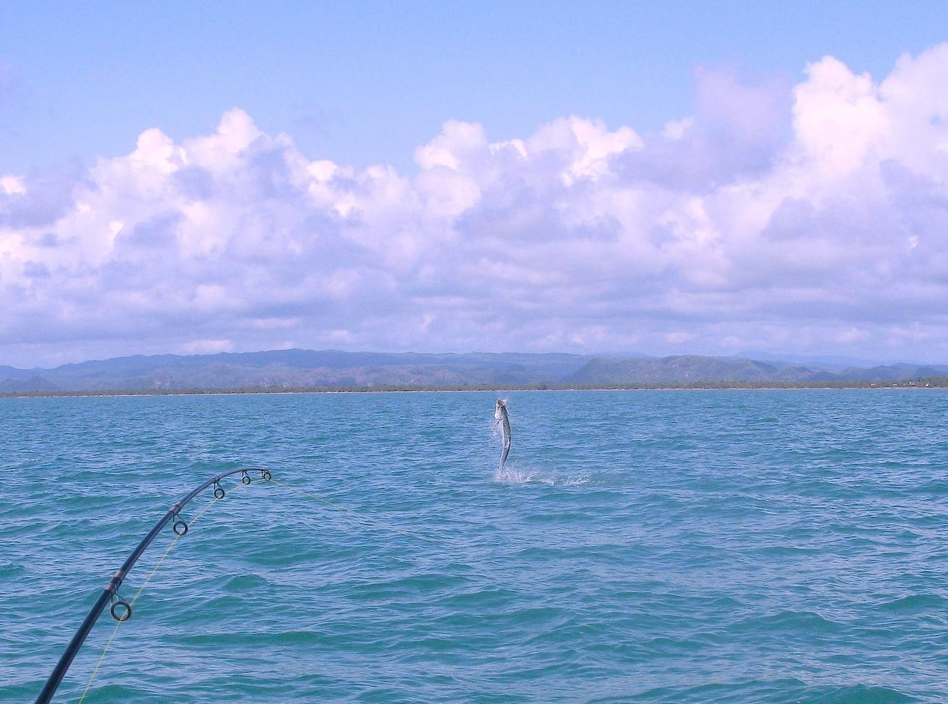 """A """"tarpon's eye"""" view of our Coastal Highway properties."""