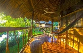 Jungle River Lodge
